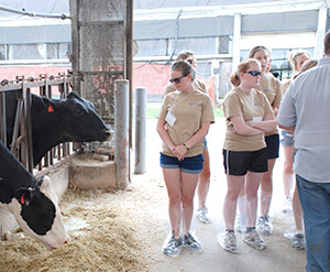 Summer VETS students at Marshak Dairy