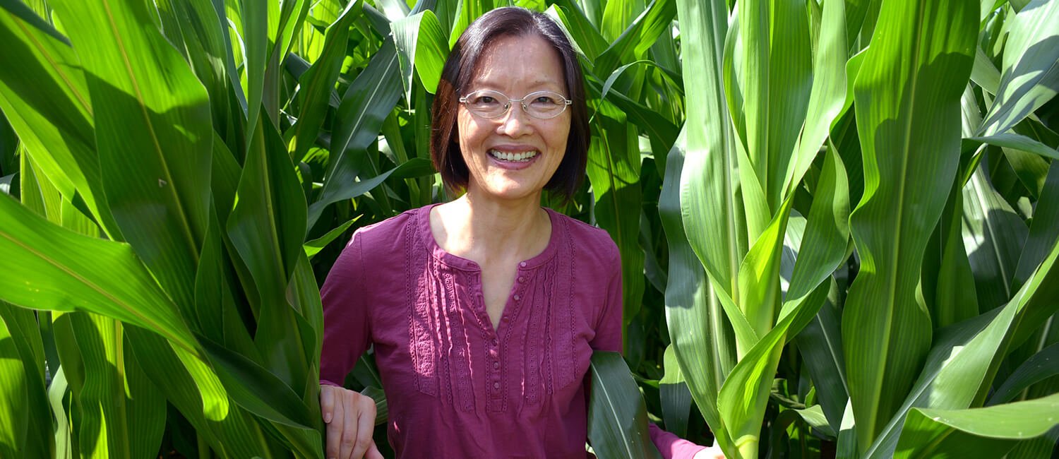 Dr. Zhengxia Dou, Professor of Agricultural Systems, Penn Vet