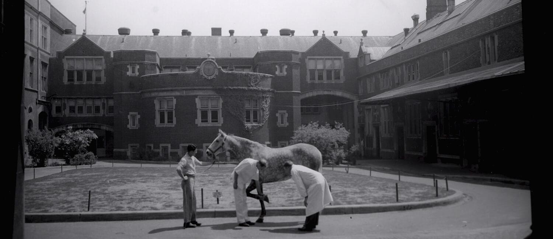 Historic view of Penn Vet Quad