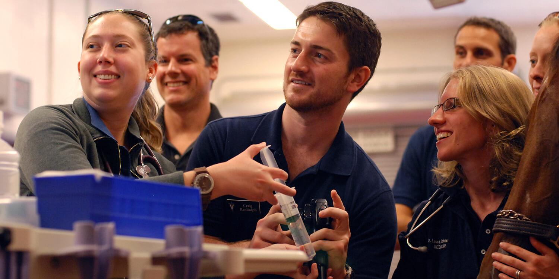 Penn Vet | Clinical Training
