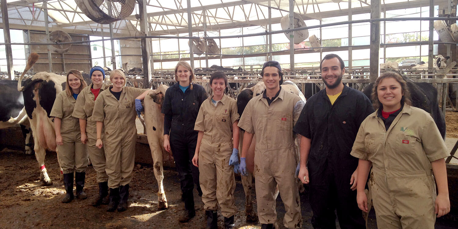 Students at New Bolton Center's Marshak Dairy