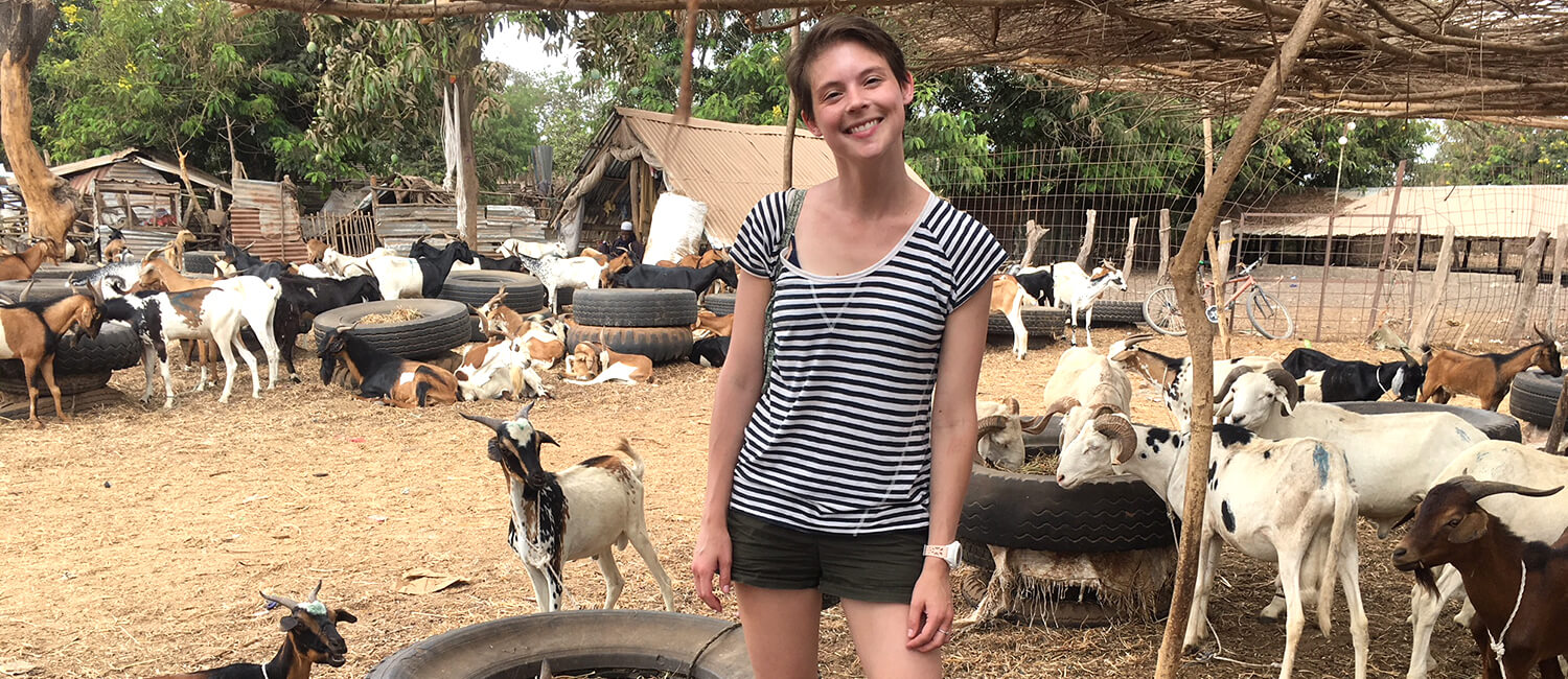 Briana Wilson V'19, helps to establish a commercial goat dairy operation in Gambia.