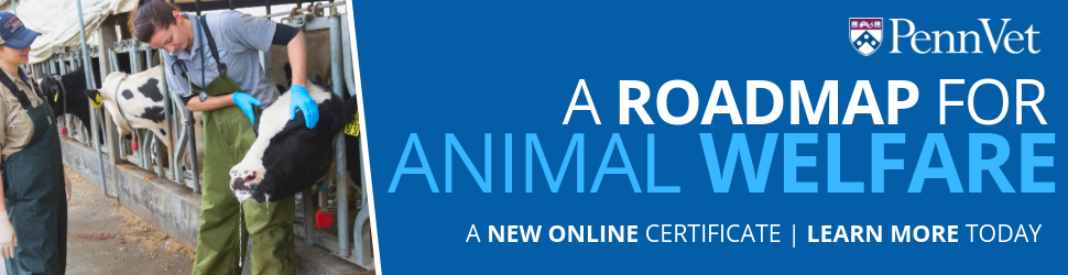 Animal Welfare & Behavior