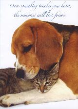 Honor the Memory of a Companion Animal with a card