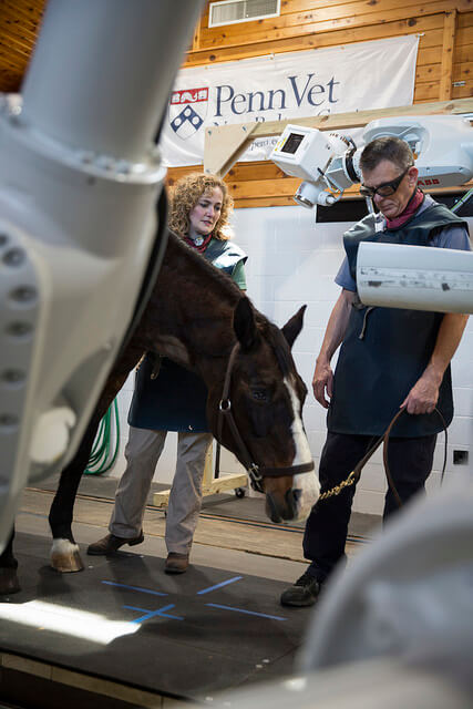 Drs Dallap and Richardson with Equine Robots