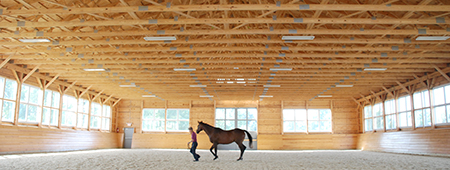 Equine Performance Evaluation Facility
