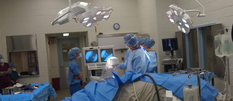 Surgery Using Fluoroscopy