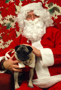 Penn Vet, pet photos with Santa