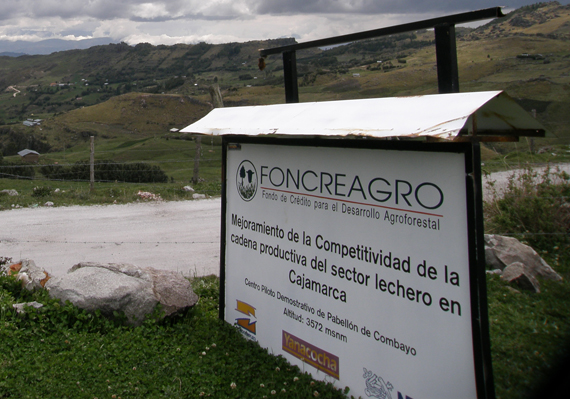 Redding connected with the nonprofit organization Foncreagro, which supports Peruvian farmers with veterinary care and other assistance.