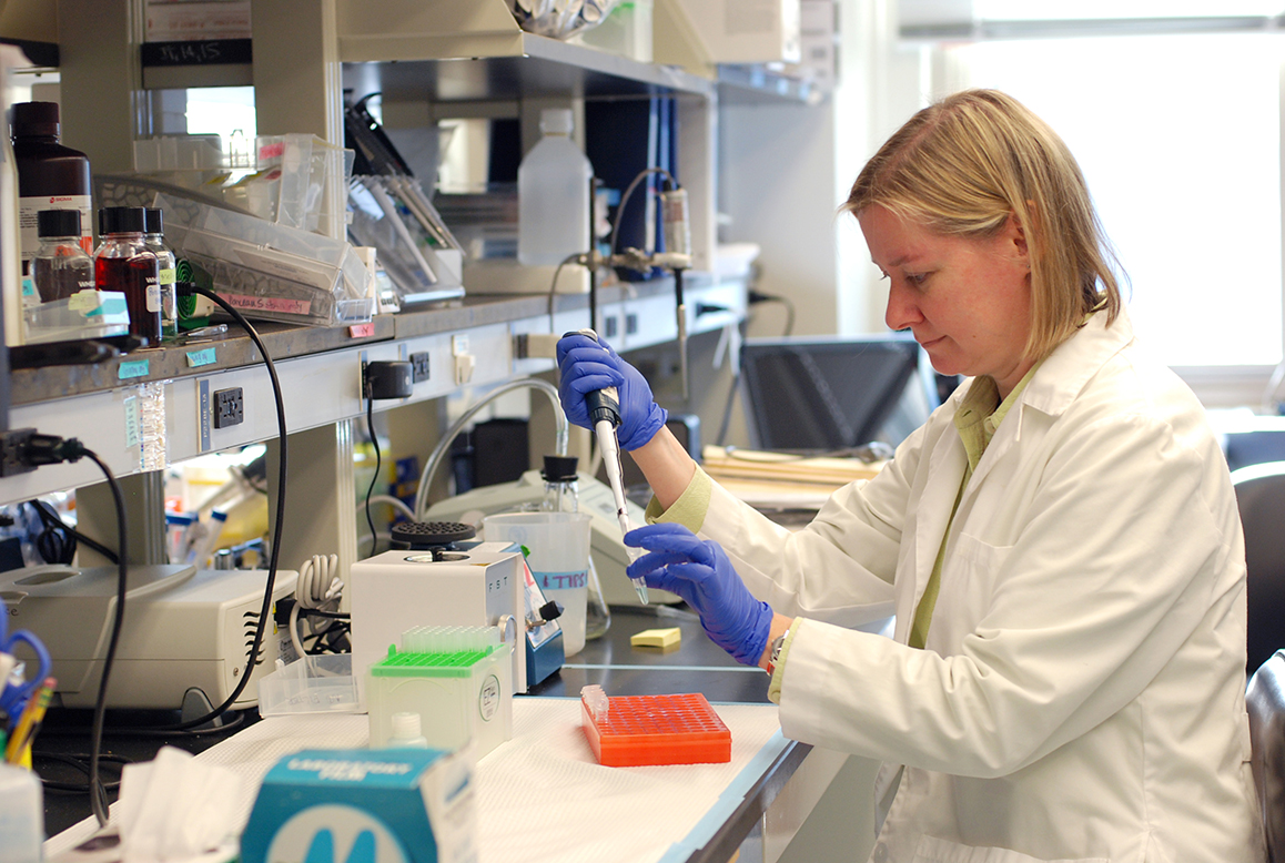 Dr. Kendra Bence is researching signaling pathways that lead to obesity.