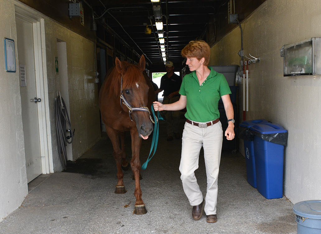 Dr. Nolen-Walston leads a horse out of the barn