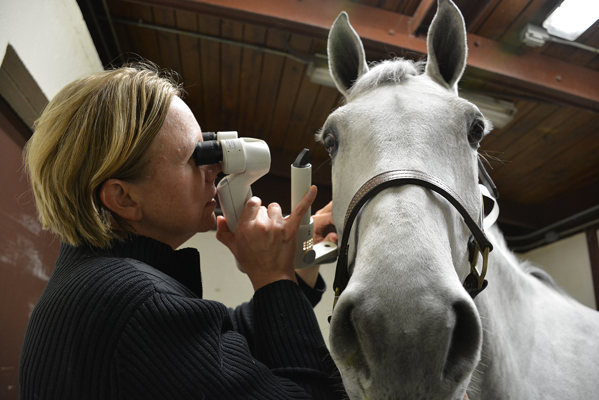 Dr. Nunnery gives an eye exam