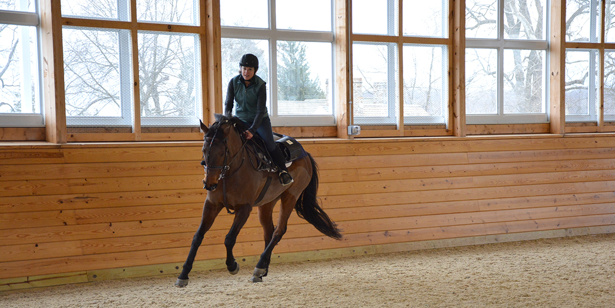 Lara Geiger rides Benji during the endoscopic examination.