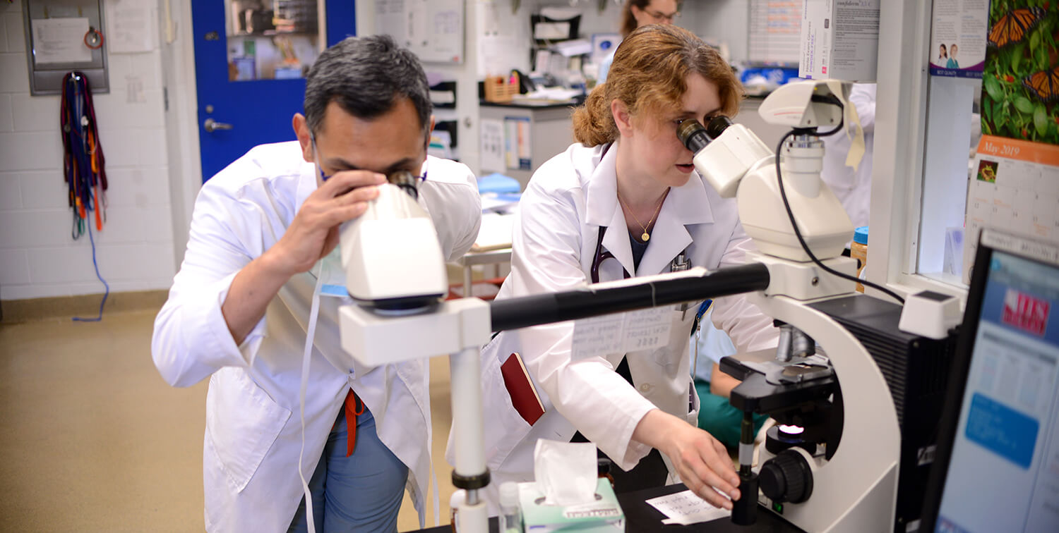 Dr. Michael Mison and Dr. Jennifer Mahoney view biopsy slides under the microscope.