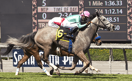 Tuttipaesi wins the $200,000 Santa Ana Stakes in March. Photo by Benoit