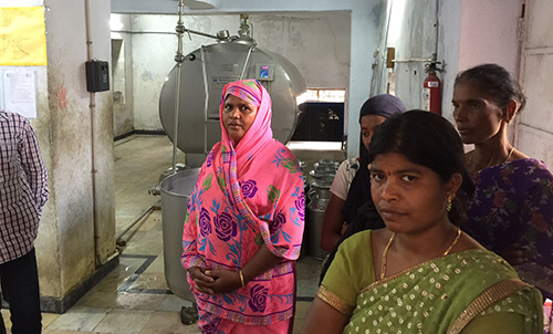 Women farmers managing the collection, chilling, and distribution processes of bovine milk in a village in Chittoor district, Andhra Pradesh, India