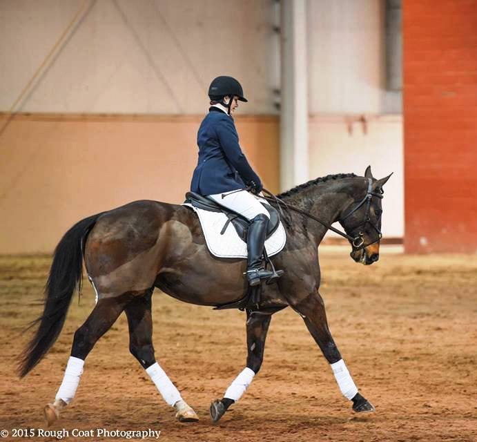 Monica and Tractor perform dressage at the PA Horse Expo Most-Wanted Thoroughbred competition.