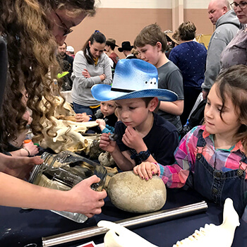 "At the Penn Vet booth's ""yucky stuff"" table, veterinary students including Katie Newcamp discussed livestock anatomy and more with inquisitive young visitors."