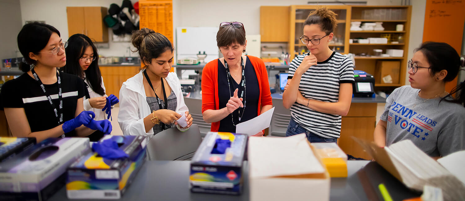 Weaving in lessons on immunology as she relays instructions for completing laboratory tasks, Jennifer Punt's (center) love of teaching shines through as she works with high school students and undergraduates in a basement lab in the Levin Building.