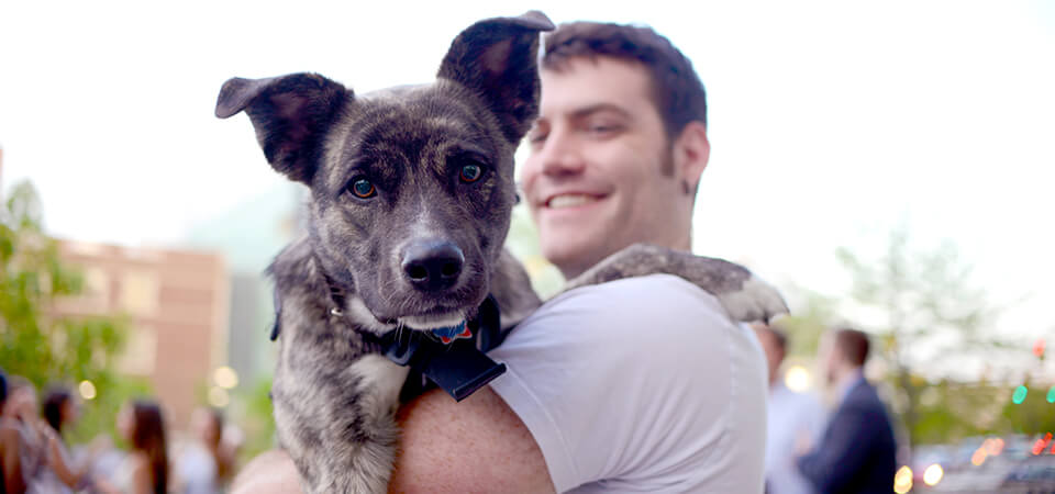 Pets pick up on their owner's personality