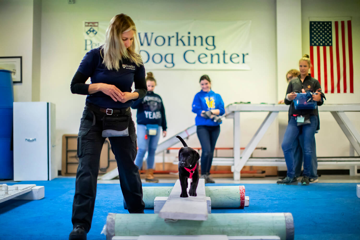 "Trainers erect various obstacles and challenges for the puppies to navigate, helping them improve their agility and also conquer any fears. ""The genetics are shining through in these dogs,"" says Berger, encouraging Uman to cross a narrow plank."