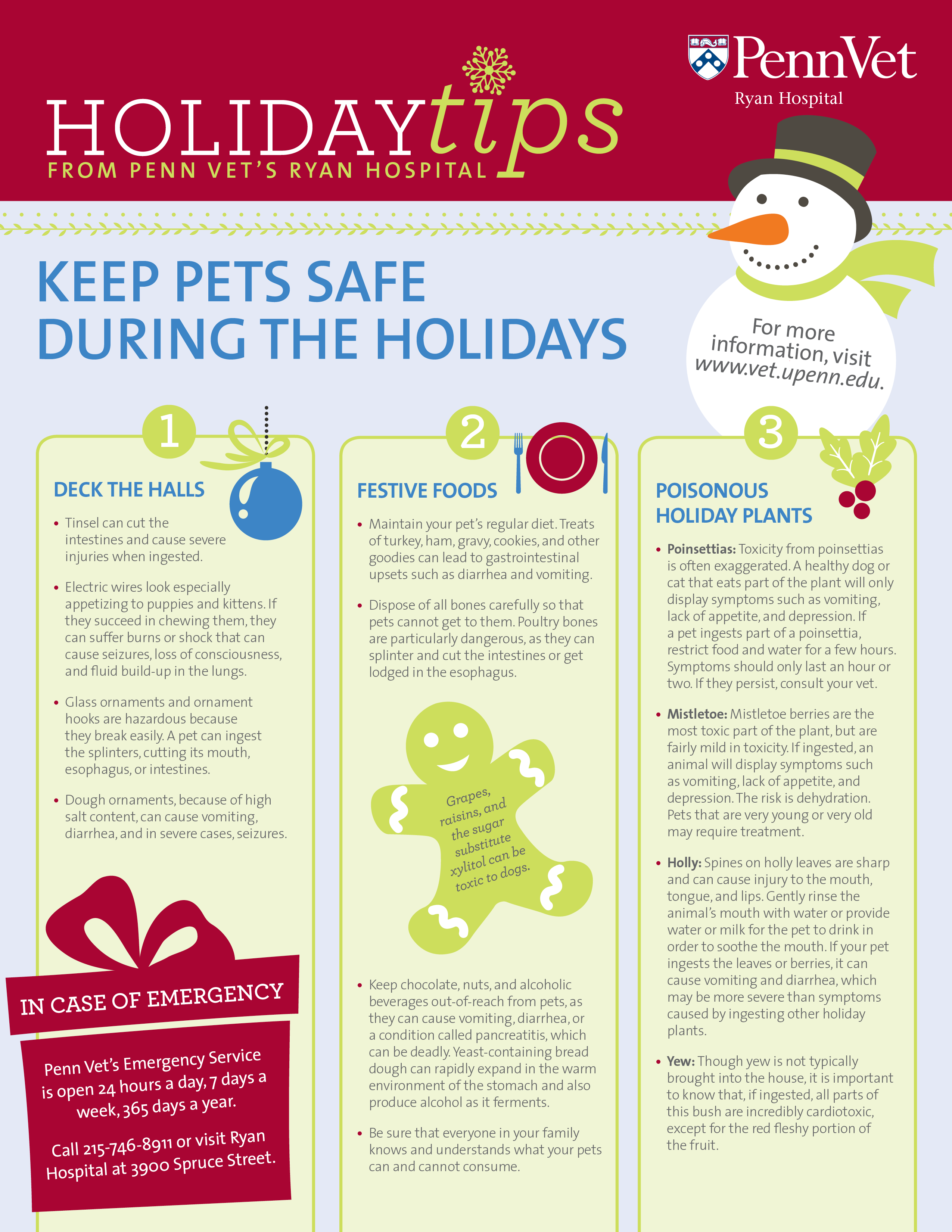 Holiday Tips for Pets