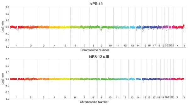 Comparative genomic hybridization analysis of human pluripotent stem cells
