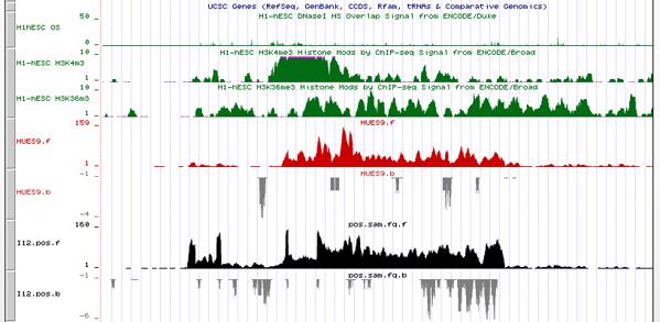 Transcriptome analysis of human pluripotent stem cells