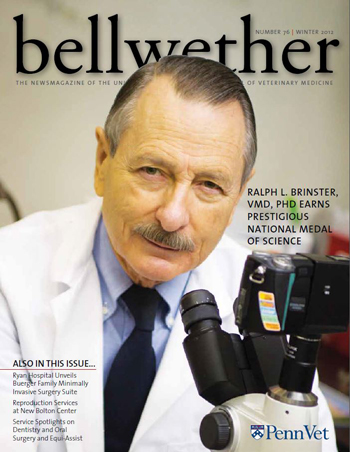 Winter 2012 Bellwether, Dr. Brinster