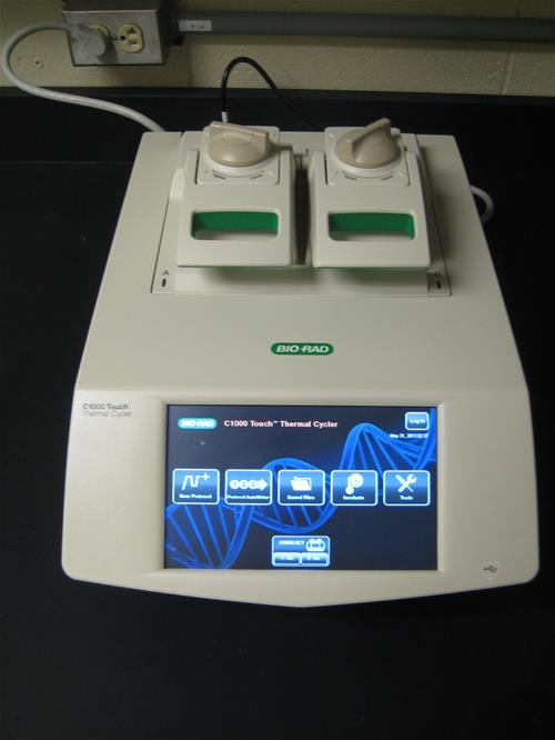 Thermal Cycler, ASMG Lab, Microbial Genomics