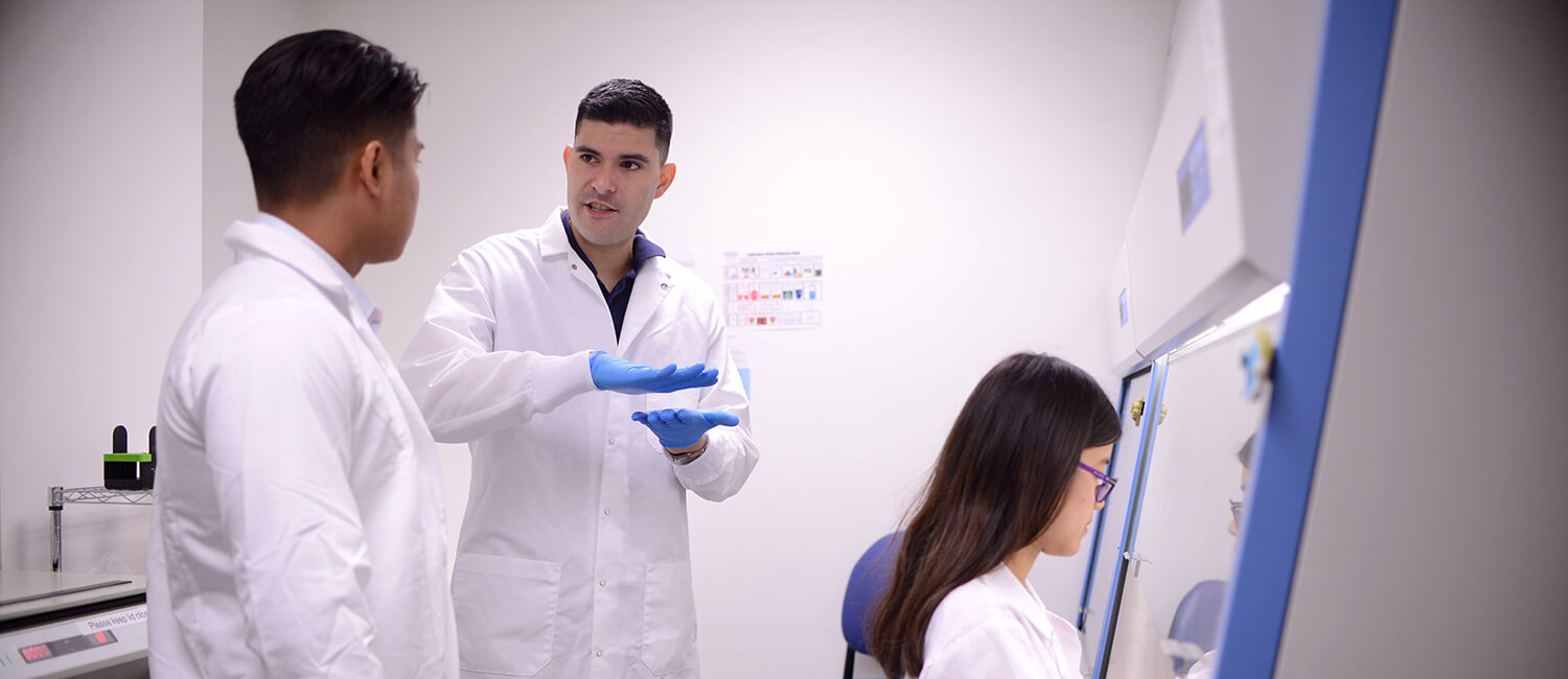 Dr. Andres Blanco, center, confers with his lab.