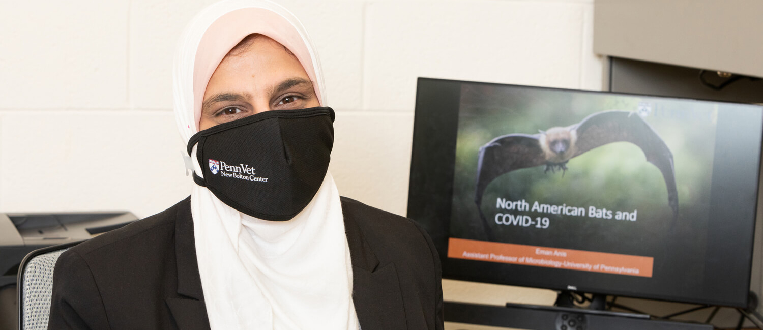 Dr. Eman Anis, researcher and professor of Pathobiology at New Bolton Center