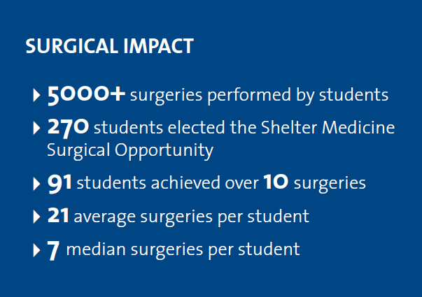 Surgical Impact