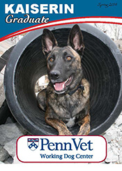 Kaiserin, Penn Vet Working Dog