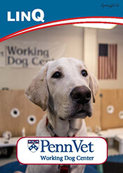 LinQ, Penn Vet Working Dog