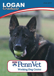 Logan, Penn Vet Working Dog