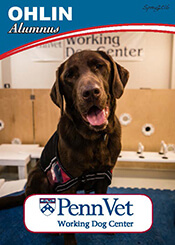 Ohlin, Penn Vet Working Dog