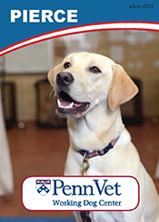 Pierce, Penn Vet Working Dog