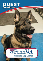 Quest, Penn Vet Working Dog