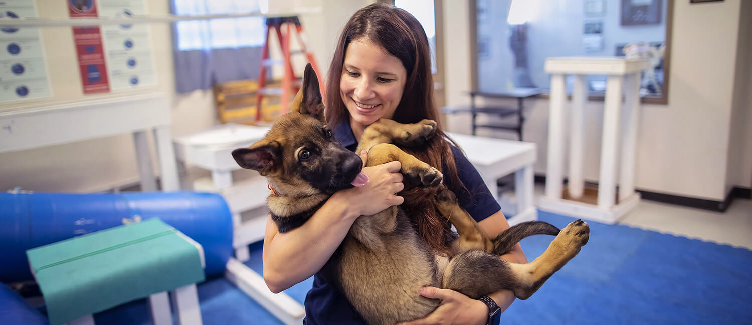 "Penn Vet's Dr. Meghan Ramos: ""I wanted a way to help people and help animals, and veterinary medicine fits that perfectly."""