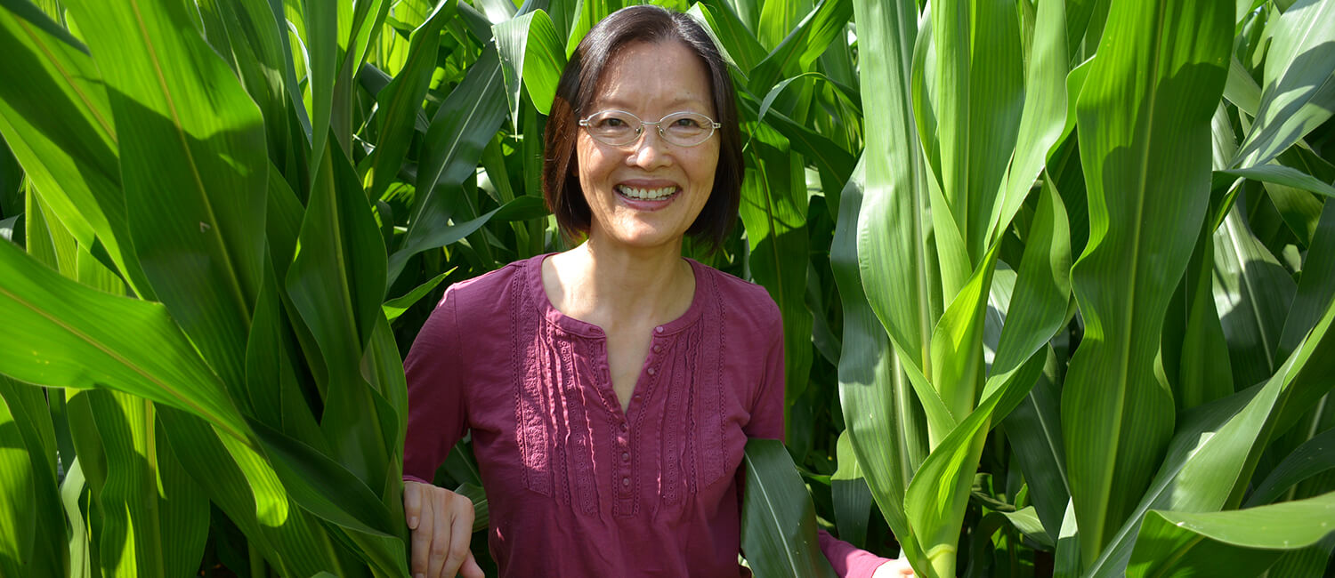 Dr. Zhengxia Dou, Agricultural Sustainability Project Reached 20.9 Million Smallholder Farmers Across China