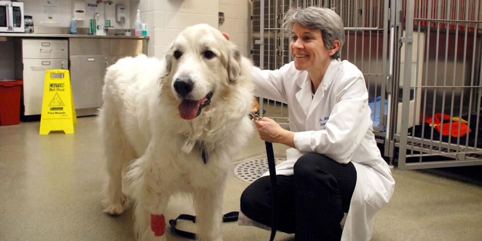 Dr. Mason and Sheba