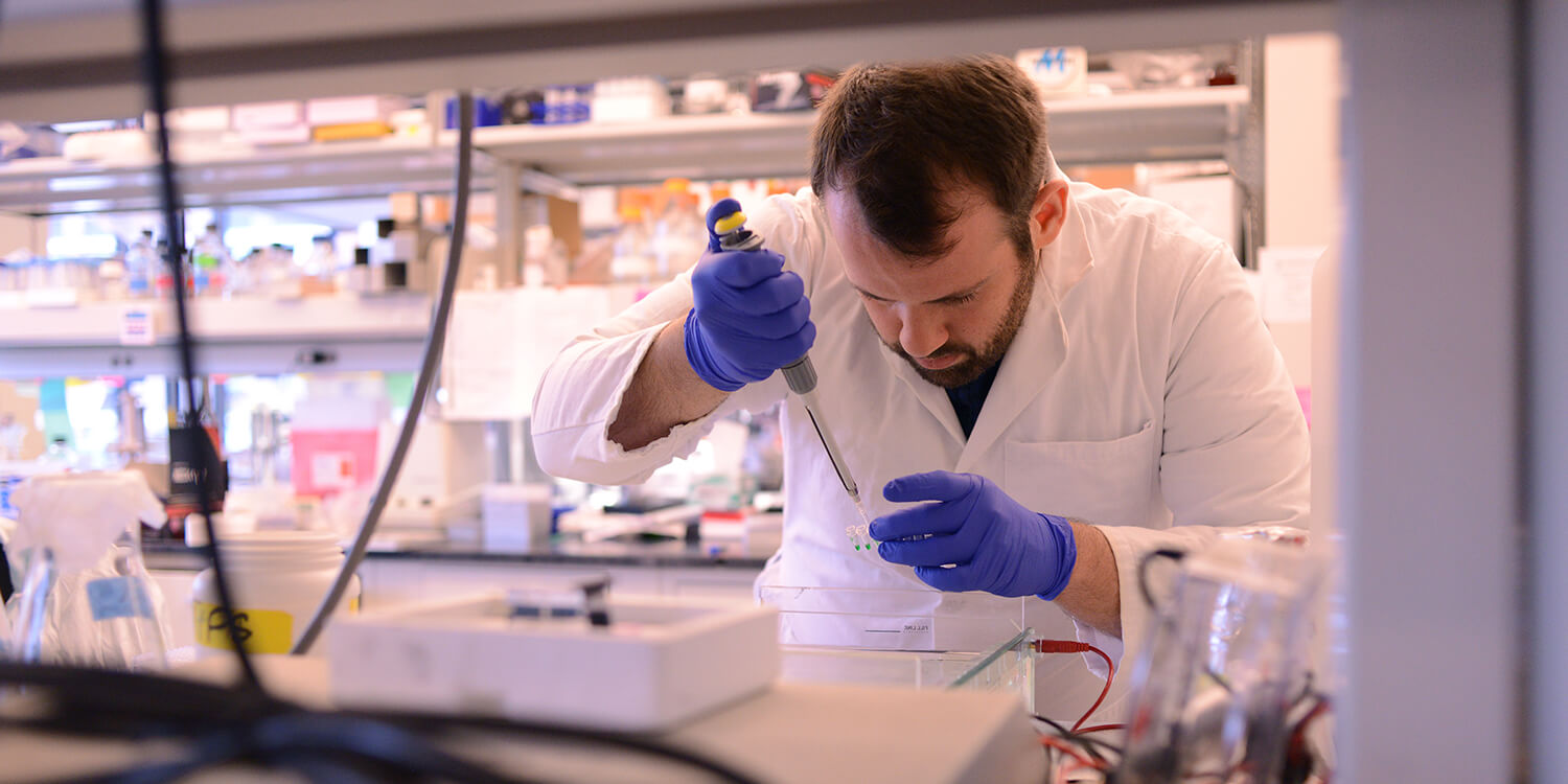 Biomedical Sciences research in cancer