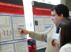 Student research day