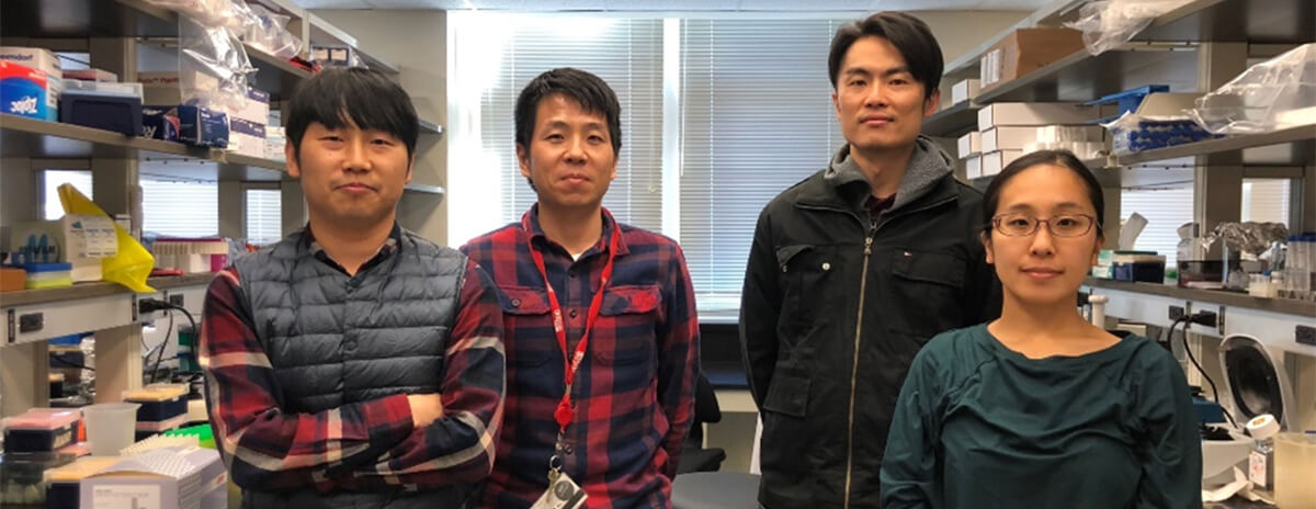 The Sasaki Lab Team