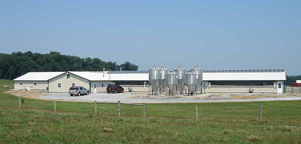 Penn Vet Swine Center