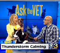 Dr. Carlo Siracusa, Ask the Vet, behavior, news
