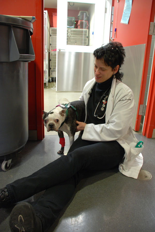 Dr. Lili Duda with canine patient