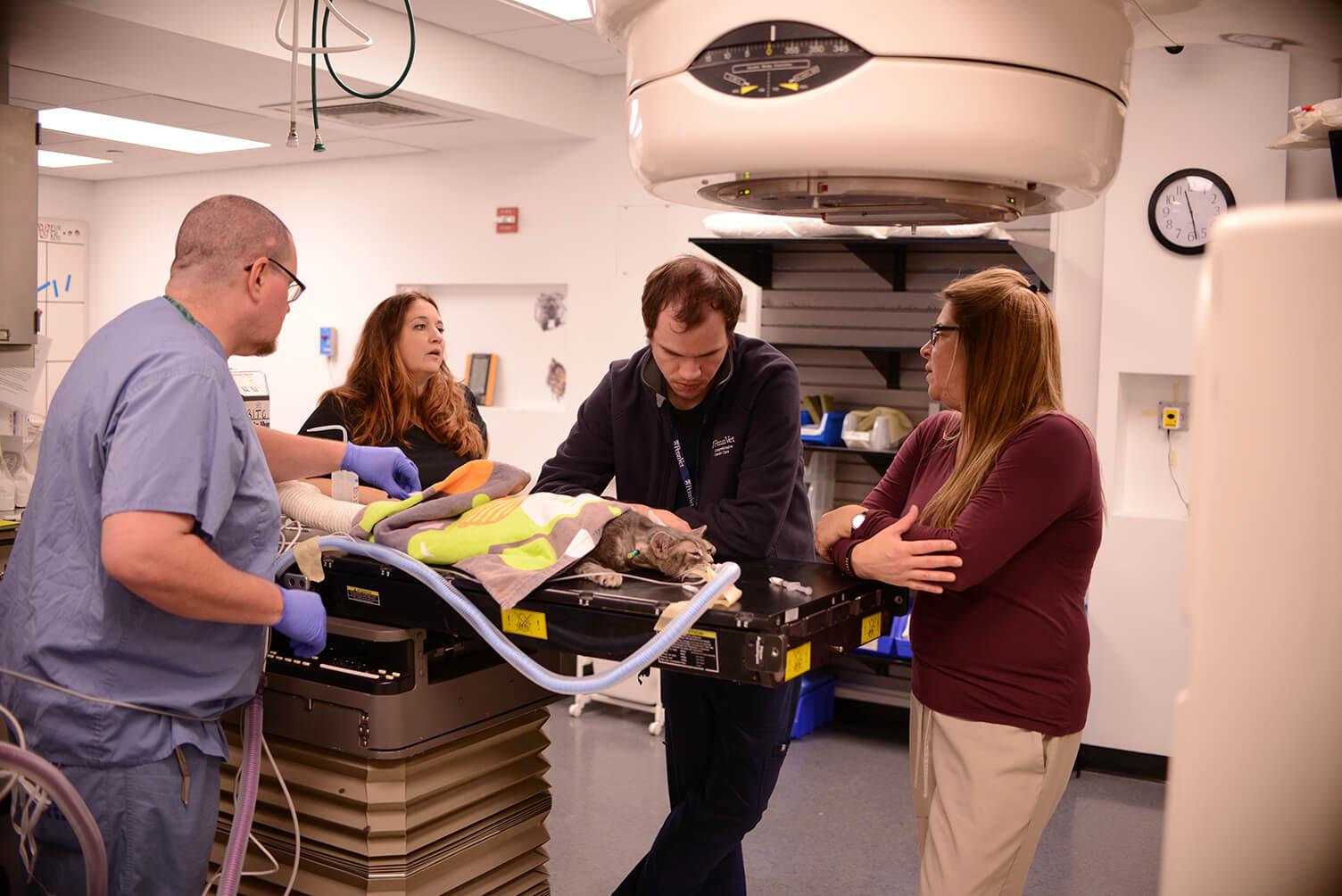 Penn Vet Radiation Oncology Recovery