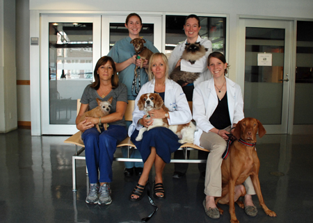 Penn Vet, Oncology Team